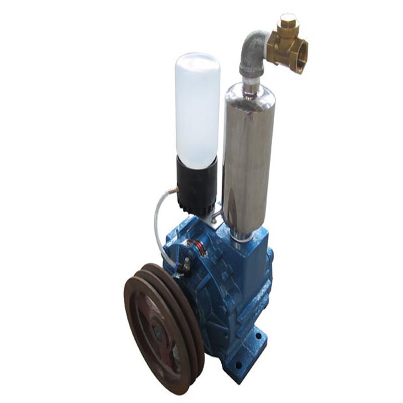 500L type roughing vacuum pump