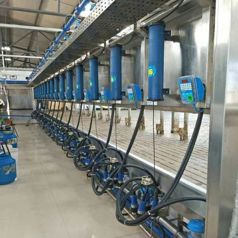 Parallel type milking parlor